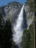 Yosemite waterfalls : A quick visit to Yosemite in May 2012 to experience the waterfalls near their peak.